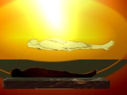 Webinar: Nahtod-Erfahrungen:  Beweise für ein Leben nach dem Tod?