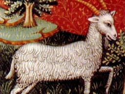 Webinar: Astrologie April 2014 - Steinbock - Die ersten Finsternisse in diesem Jahr