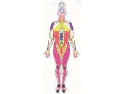 Webinar: Die neuen Haupt-Chakren - Meditation