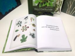 """Webinar: BAUMHEILKUNDE: """"EINE ART LIEBESERKLÄRUNG"""" - Online-Lesung"""