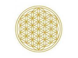 Webinar: Deeksha - Das göttliche Samenkorn - Meditationsabend