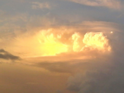 Webinar: Göttliches- Divine Provisions Reiki Grad 1- Einweihung