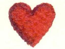 Webinar: Astromedizin 2.1.:Herz und Kreislaufsystem;Arterielle Verschlüsse