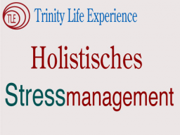Webinar: Holistisches Stressmanagement