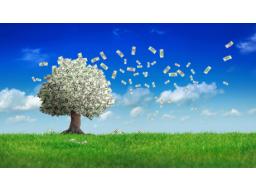 Webinar: Geldseminar: Update alter Überzeugungen