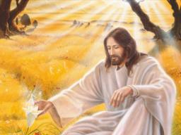 Webinar: Verbindung in das Christuslicht