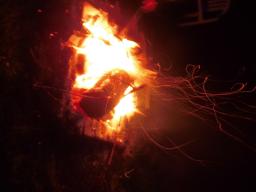 Webinar: Licht in der Dunkelheit - Kräuter für die Seele