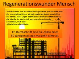 Webinar: Wunderwerk Mensch