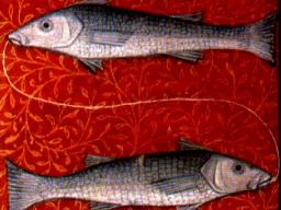 Webinar: Astrologie April 2014 - Fische - Die ersten Finsternisse in diesem Jahr