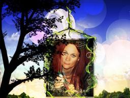 Webinar: keltische Astrologie - der keltische Tierkreis oder das keltische Baumorakel