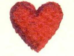 Webinar: Astromedizin 2.2: Herz und Kreislaufsystem; Aneurysmen,Thrombosen und Embolien