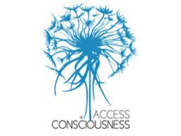 Webinar: Access Bars - Eine wunderbare Möglichkeit sich von alten Blockaden zu befreien