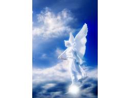 Webinar: Die Zeichen der Engel im Alltag erkennen