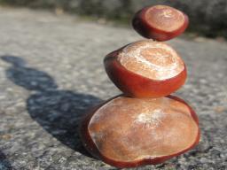 Webinar: Körpertiefen - Meditation