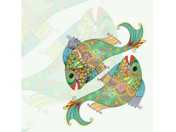Webinar: Jahresserie Astromedizin-Fische