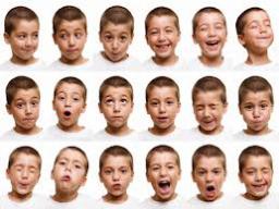 Webinar: Kopf und Gesicht lesen lernen