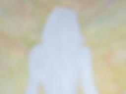 Webinar: Energie der Bachblüten - stille Meditation