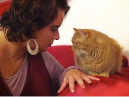 Webinar: Katzenflüsterin