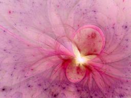 Webinar: Die Schlüssel zur Lichtebene - 3: Aktivierung des Rosa Farbstrahls