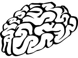 Webinar: Kurs: Gedankenkontrolle
