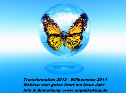 Webinar: Transformation 2013 - Willkommen 2014