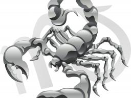 Webinar: Im Zeichen des Skorpions * Aufklärung für das dritte Zeitalter