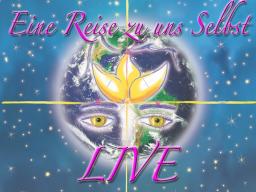 Webinar: 02-11 Lebendige Lichtsysteme