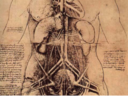 Webinar: zum Thema: Organbewußtsein - Öffentliches Channeling - Sabine Richter -