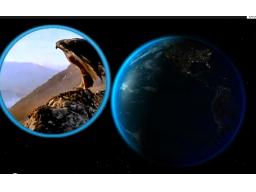 Webinar: Die Welt der Esoterik im New Age Business