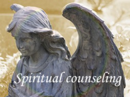 Webinar: Spiritual Counseling (30 minutes)