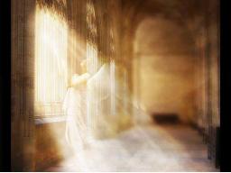 Webinar: Meditative Gedanken/Gebet für den Sonntag