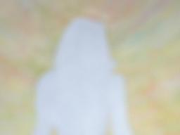 Webinar: Karma Reinigung - Stille Meditation