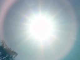 Webinar: Sonnenweg im Sternbild Löwe