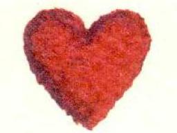 Webinar: Astromedizin 2.3.: Herz und Kreislaufsystem; Rhythmusstörungen und Klappendefekte