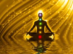 Webinar: Meditieren , Grundkurs