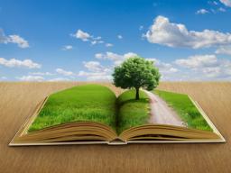 Webinar: Traumreise - Der kleine Ausstieg aus dem Alltag