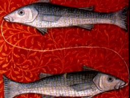 Webinar: Astrologie März 2014 - Fische - Die Tore öffnen sich
