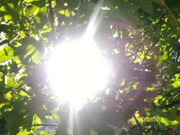 Webinar: Energetische Tiefenreinigung mit dem Tarass Kristall