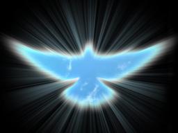Webinar: Was ist Christusbewusstsein wirklich?
