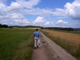 Webinar: Geh nicht ohne Sinn und Plan durch das Leben (LebensPlanStrategie)