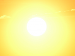 Webinar: Astrologie lernen * Prognose * Das Solarhoroskop