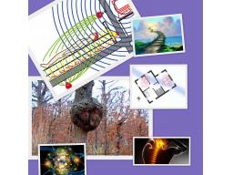 Webinar: Wasseradern, Elektrosmog, Geopathie-was macht uns krank?