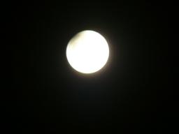 Webinar: Der Mond im Horoskop