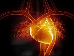 Webinar: Die 5. Herzkammer - eine Reise zu Deinem göttlichen Funken