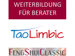 Webinar: TaoLimbic