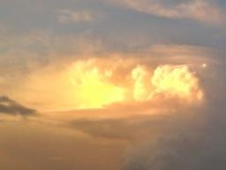 Webinar: Göttliches -Divine Provision Reiki, Grad  1 - Einweihung