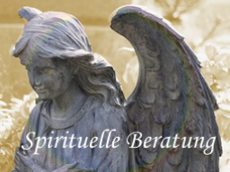 Webinar: Spirituelle Lebensberatung (30 Min.)