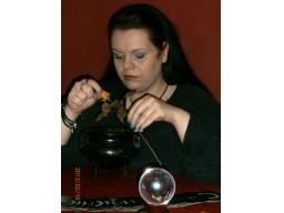 Webinar: Infowebinar - Stefanie Gralewski - Die Berliner Hexe