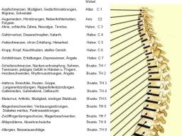Webinar: Schmerzpunkt Wirbelsäule - Begradigung mit den Christusenergien