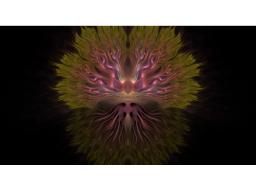 Webinar: Auraschichten in Balance - eine spirituelle Trancreise zur Reinigung der Aura
